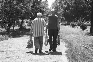 Disponibilità per la vecchiaia